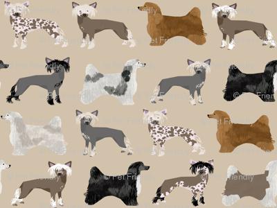 chinese crested dog hairless powderpuff cute dog pets pet dog fabric