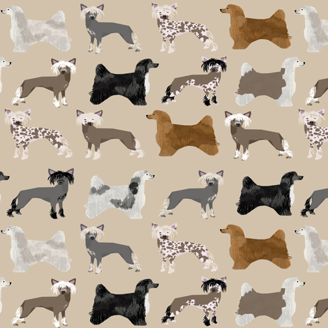 chinese crested dog hairless powderpuff cute dog pets pet dog fabric  fabric by petfriendly on Spoonflower - custom fabric