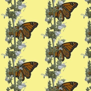 butterflies 4 yellow background