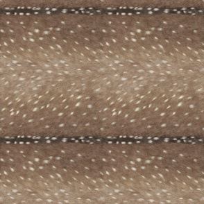 Railroaded Deer Hide // Taupe