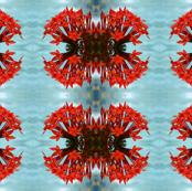 Fijian_Flowers