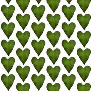 leaf heart original