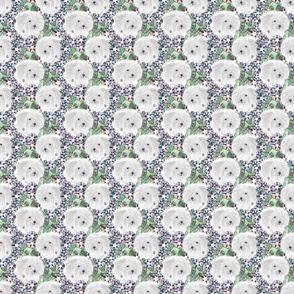 Floral Coton de Tulear portraits - small