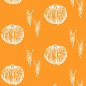 pumpkin and grain