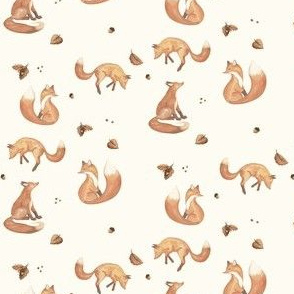 Foxes autumn fox red foxes