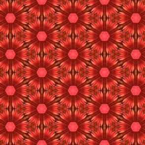 tiling_IMG_3833_1