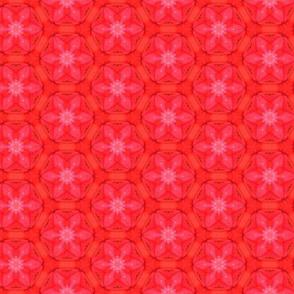 tiling_IMG_3833_2