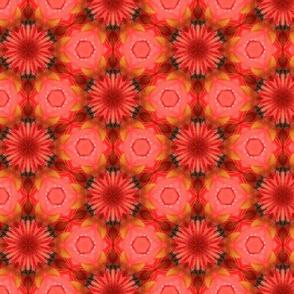 tiling_IMG_3833_4