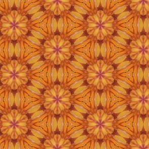 tiling_IMG_3935_6