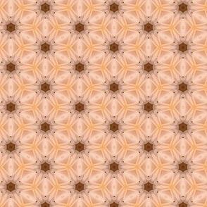 tiling_IMG_3944_1