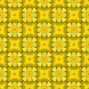 tiling_IMG_3978_6