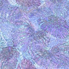 Sandy Lavender Monstera