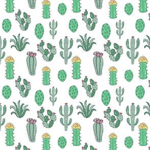 Cactus Obsessed