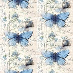 Vintage Blue Butterfly Italian Postcard
