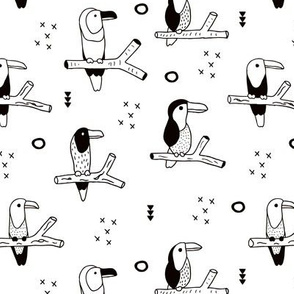 Pura vida tropical tucan birds collection toucan kingfisher and hummingbirds jungle animals winter black and white