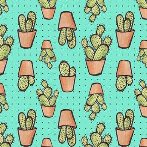 cactus terra cotta