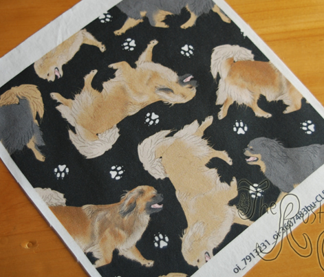 Trotting Tibetan Spaniels and paw prints - black