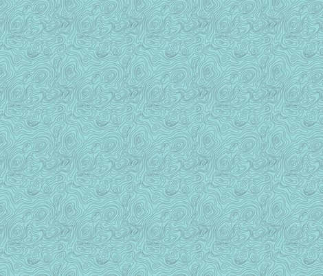 Rtopographic-map-blue-upload_shop_preview