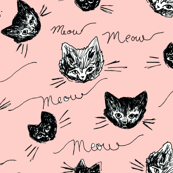 Scribbly Cats Meow Blush
