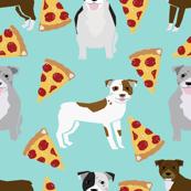 pitbull terrier pizza mint dog dog breed funny dog pizza novelty design pizza food cute dog pets