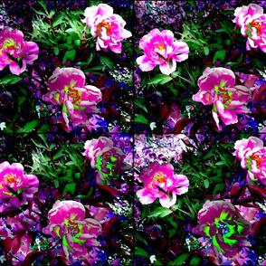 Flower_Floressence