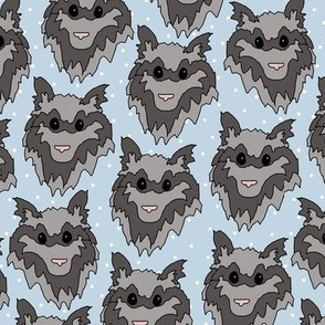 Raccoon Dots Blue