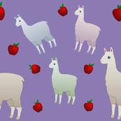 Llamas &Apples