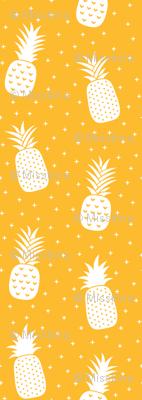 pineapples + orange :: fruity fun huge