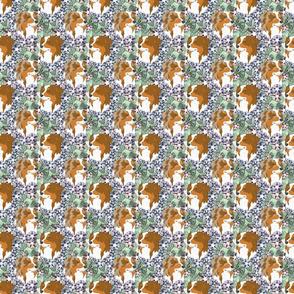 Floral Australian Shepherd portraits B - small