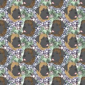 Floral Mastiff portraits