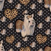 Yorkie - Leopard Yorkie Princes