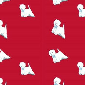 Westies on red