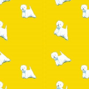 Westies on yellow
