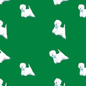 Westies on green