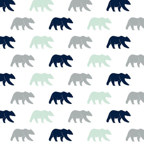 multi bear || the northern lights collection