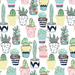 Cute Cacti In Pots