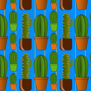Cactus in the Blue Room