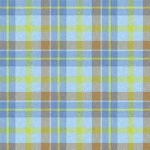 Biddulph_Grange_Tartan_Wool