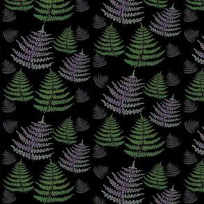 Ferns on Black