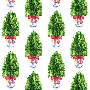 Tall Christmas Boxwood Topiary in Blue and White Cachepot