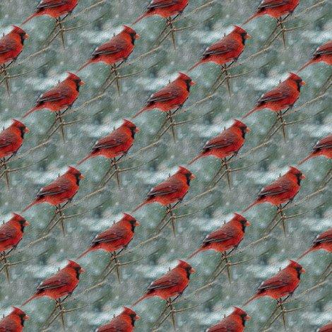 Rrra_cardinal_3_shop_preview