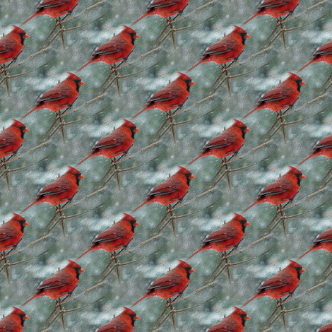 cardinal 1 fabric by stofftoy on Spoonflower - custom fabric