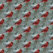 Rrra_cardinal_3_shop_thumb