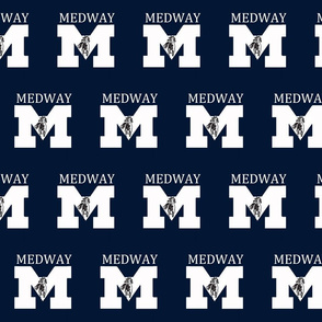 Medway Mustangs