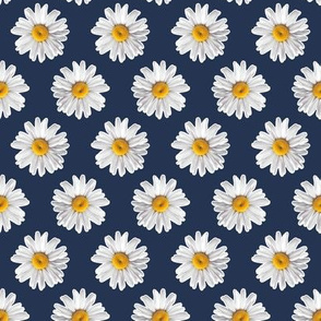 Daisies on Navy