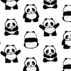 pandas on white || pandamonium