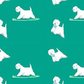 westies conf on teal