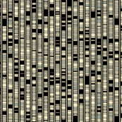 Ideogram-05