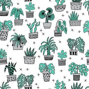 houseplants // green houseplants plant cactus hand drawn illustration