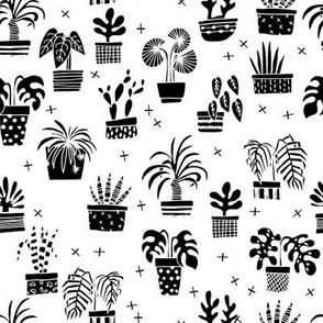 houseplants // black and white plants plant cactus palms palm hand drawn illustration